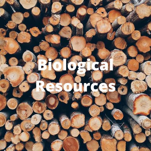Biological Resources