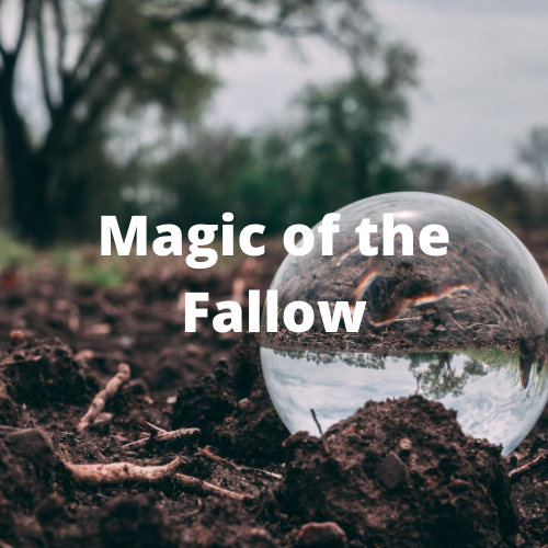 Magic of the Fallow