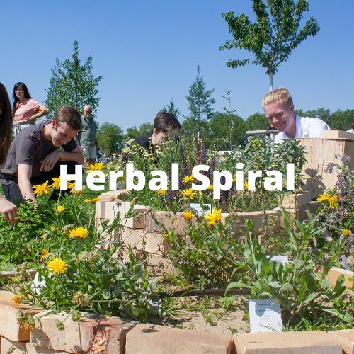 Herbal Spiral